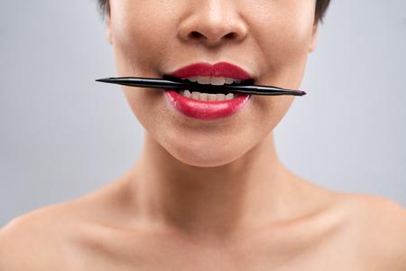 Professional lip brush