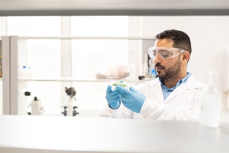 Arabian biologist examining substance Stock Photo