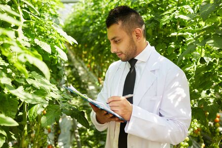 Content experienced Arabian quality control inspector in lab coat working with data in greenhouse