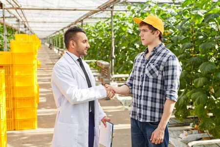 Young farmer in yellow cap standing in hothouse and handshaking with Arabian quality control inspector Reklamní fotografie