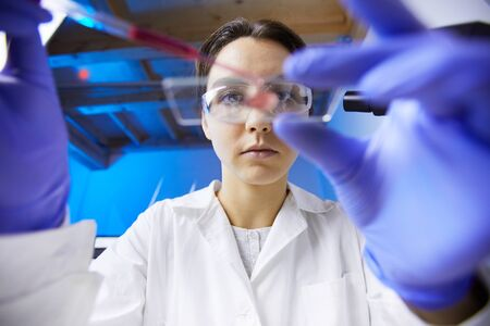 Low angle view at young female scientist preparing test sample using dropper while working in medical laboratory, copy space Imagens