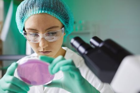 Portrait of young female scientist looking into petri dish while working on research in laboratory, copy space