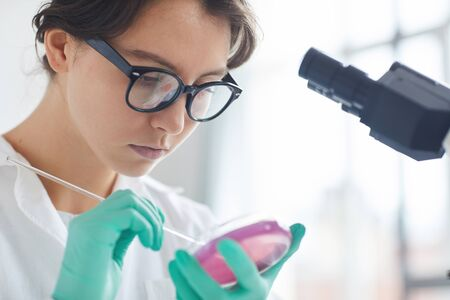 Portrait of beautiful young woman working in laboratory, preparing test samples in petri dish for microscope research, copy space