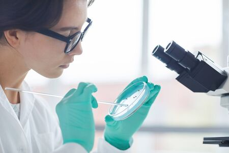 Side view portrait of beautiful young woman holding petri dish while working on research in medical laboratory, copy space
