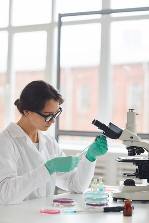 Side view portrait of beautiful young woman working on research in medical laboratory and preparing test samples sitting by window