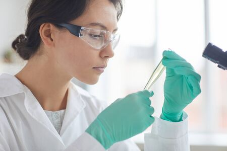 Side view portrait of beautiful young woman doing tests while working in medical laboratory, copy space