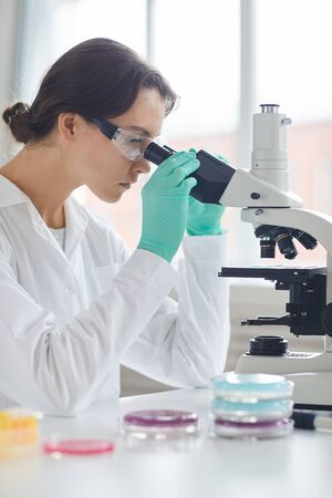 Side view portrait of beautiful young woman looking in microscope while working in medical laboratory Фото со стока
