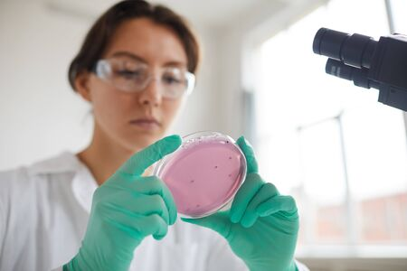 Low angle portrait of young woman holding petri dish while working on research in medical laboratory, copy space