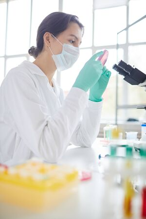 Side view portrait of young woman holding petri dish while working on research in medical laboratory Фото со стока