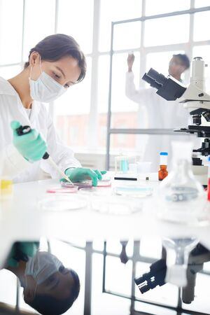 Side view portrait of young woman working in laboratory preparing test samples in petri dish for medical research