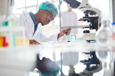 Side view portrait of African-American man working in laboratory preparing test samples in petri dish for medical research, copy space