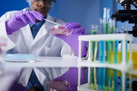 Close up of young African-American man holding petri dish sample while working on medical research in laboratory, copy space