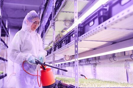Waist up portrait of female agricultural engineer spraying fertilizer while working in plant nursery greenhouse lit by blue light, copy space Reklamní fotografie