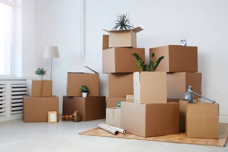 Minimal background image of cardboard boxes stacked in empty room with plants and personal belongings inside, moving or relocation concept, copy space Standard-Bild
