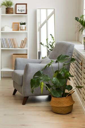 Vertical background image of comfy grey armchair in cozy nook of modern Scandinavian home decorated with plants, copy space