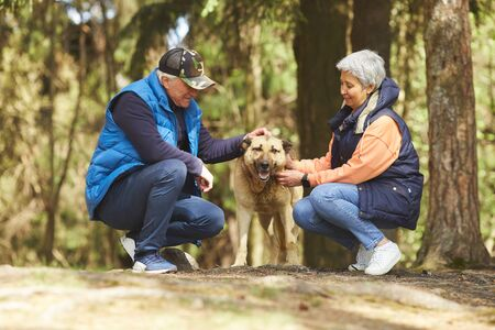 Full length portrait of active senior couple petting big dog while enjoying hike in beautiful forest lit by sunlight Banque d'images