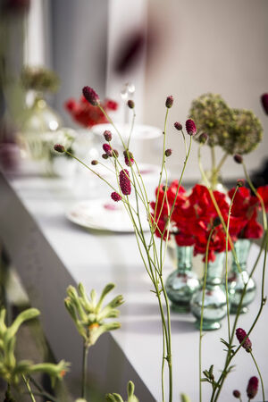 Flowers   bouquet   Garden Party   table flowers photo