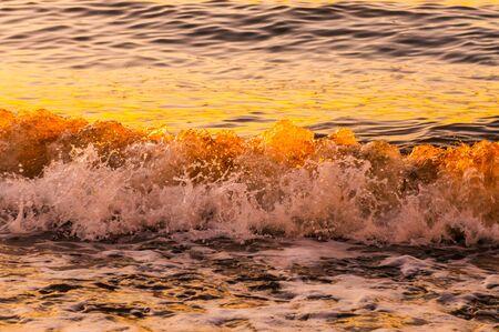 shorebreak: Foam and golden sunset waves in the baltic sea.
