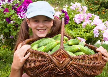 Little girl with the big basket with cucumbers Stock Photo