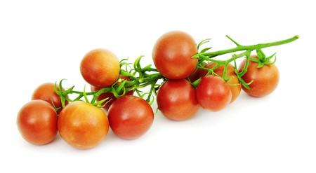 fascicule: Cluster of ripe tomatoes on a white background Stock Photo