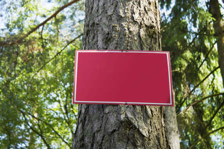is established: Red metal plate is established on  wood glade Stock Photo