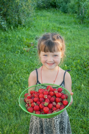 The little girl in the garden with strawberries Stock Photo
