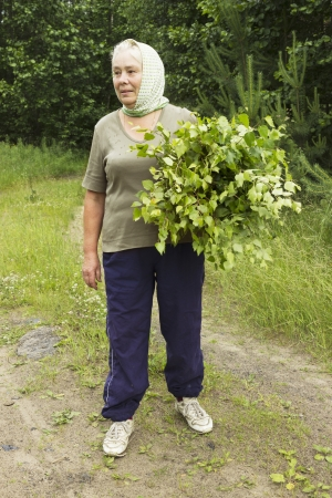 Mature beautiful woman prepares birch twigs in June photo
