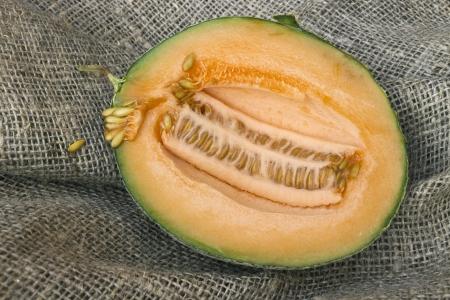 Half a small butternut squash melon, cut in half photo