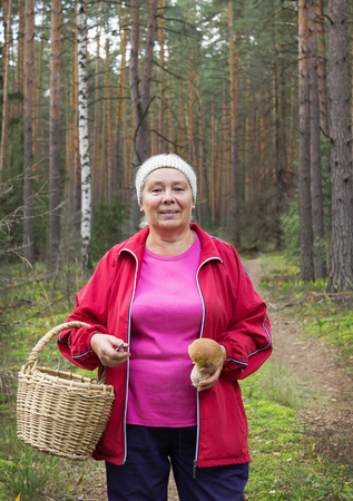 Woman found a large mushroom in the pine forest photo