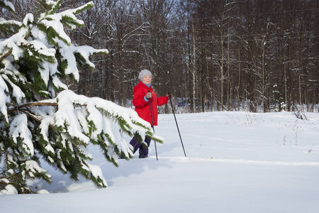 Woman retirement age, europeans, walks in the winter forest photo
