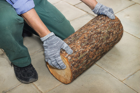 billet: Master holds in his hands Billet of logs on floor Stock Photo