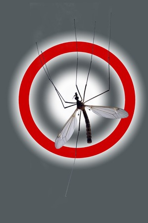 numerous: Danger: Mosquito! Danger sign about a numerous attack of mosquitoes, malaria danger. Stock Photo