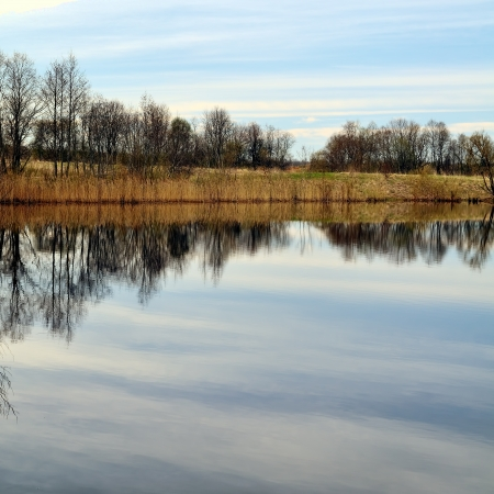 reflexion: Primavera al lado del lago, a principios Reflexi�n del cielo por la ma�ana en un agua Foto de archivo