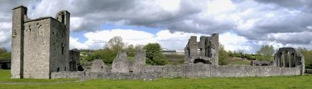 co  meath: Ruin  Trim Priory of St John the Baptist  Trim, Co  Meath, Ireland