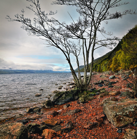 loch ness: Loch Ness coastline  in Highlands Scotland
