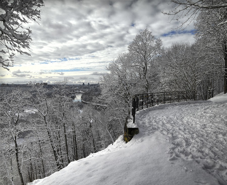 snow covered forest: Snow covered forest landscape and Verkiai palace viewpoint.