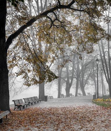 Bernardine gardens,Vilnia River, Vilnius, Lithuania. Gold autumn time, early morning mist.