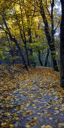 Tuputiskia Landscape Reserve. Golden autumn time