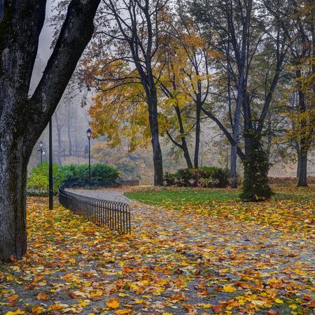 Bernardine gardens, Vilnius, Lithuania. Gold autumn time, early morning mist.