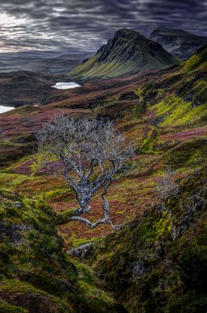 Northeast coast of Trotternish Peninsula, Isle of Skye, Inner Hebrides, Scotland, United Kingdom, Europe.