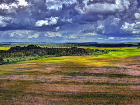 Rye field, forest and cloudy sky.. View from the observation deck Tytuvenai Observation tower