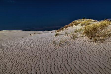 Moving sand dunes at Slowinski National Park near Leba, Pomeranian Voivodeship, Poland.