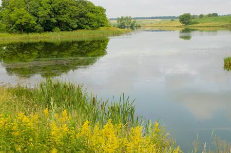 Landscape of lake in summer