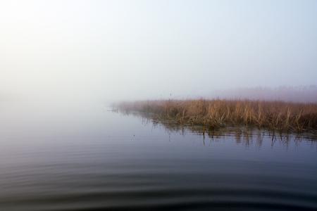 water s edge: Lago nella nebbia
