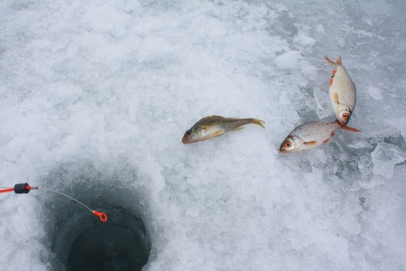 Ice Fishing Stock Photo - 16241799