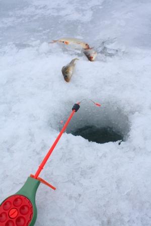 jigging: Ice Fishing