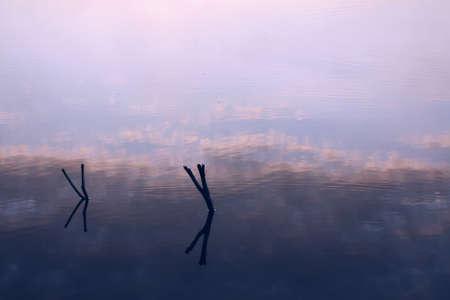 water s edge: Riflessione del cielo