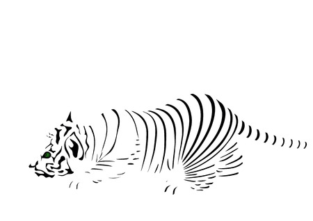 crouching: Strips of tiger
