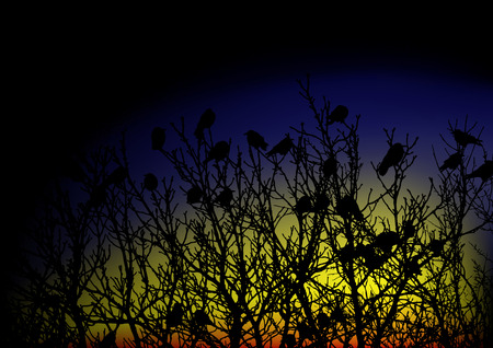 Crows on a tree Vector
