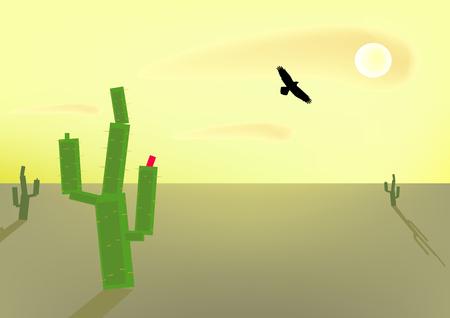 Morning in a desert